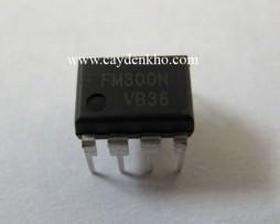 FM300N